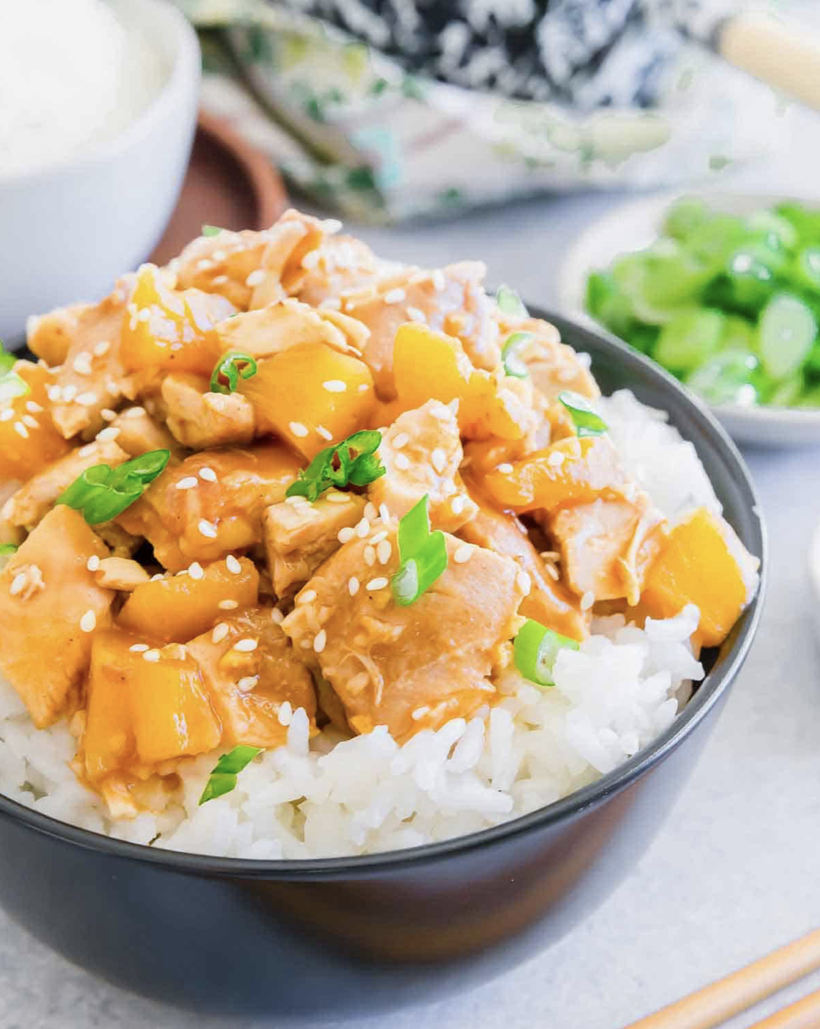 65 Easy Instant Pot + Crockpot Dinner Recipes | Slow Cooker Honey Garlic Chicken