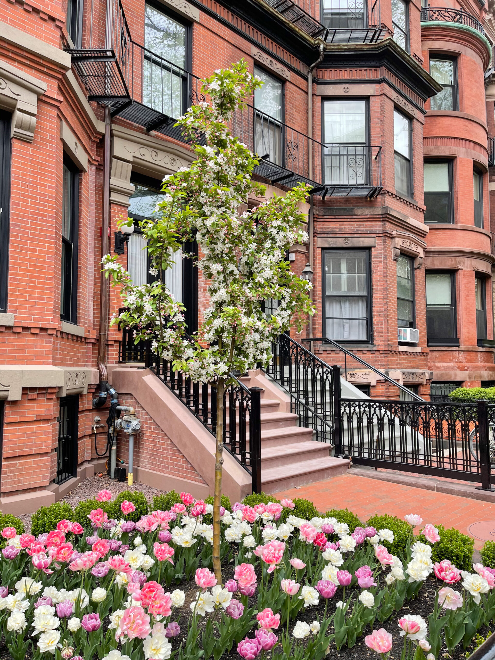 exterior of homes in Back Bay for Mother's Day Weekend Plans